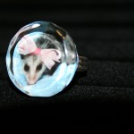 Baby Opossum Glass Ring